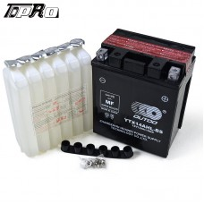 TDPRO 12 Volt Performance AGM Battery YTX14AHL-BS for Motorcycle Scooter Snowmobile