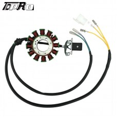TDPRO 12 Pole Moped Magneto Stator Coil For 200cc-250cc ATV Go Kart Quad Pitbike Air Or Water Cooled Vertical Engine