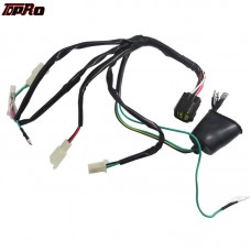 TDPRO Pit Bike Complete Wiring Harness Wire Loom For Lifan 150CC Motorcycle Engine ATV Dirt Go Kart