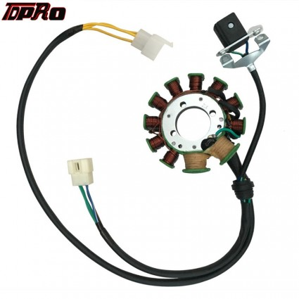 TDPRO 11 Pole Moped Magneto Stator Coil For 200cc-250cc ATV Go Kart Quad Pitbike Air Or Water Cooled Vertical Engine
